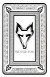 Silver Fox Blackjack System
